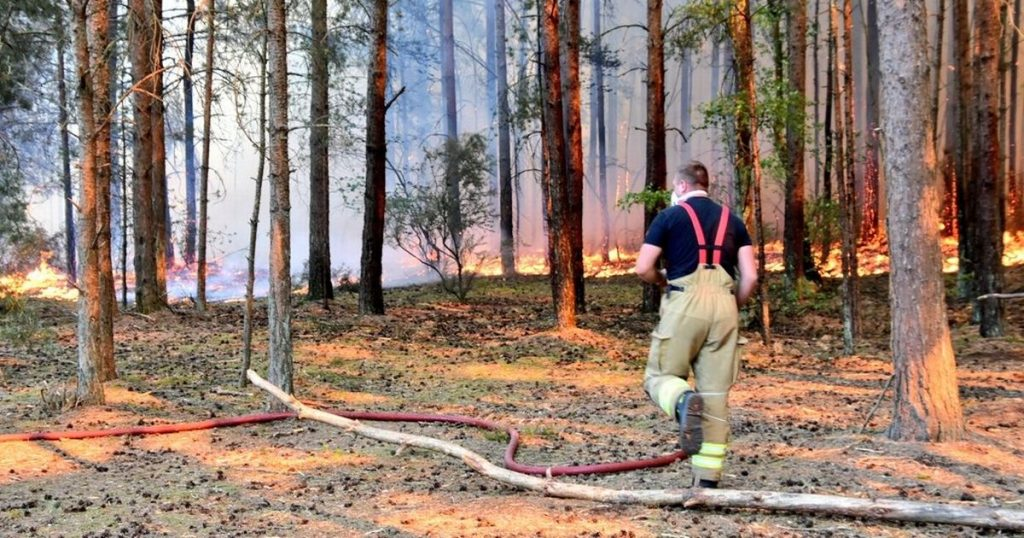Firefighters at Thursley Common